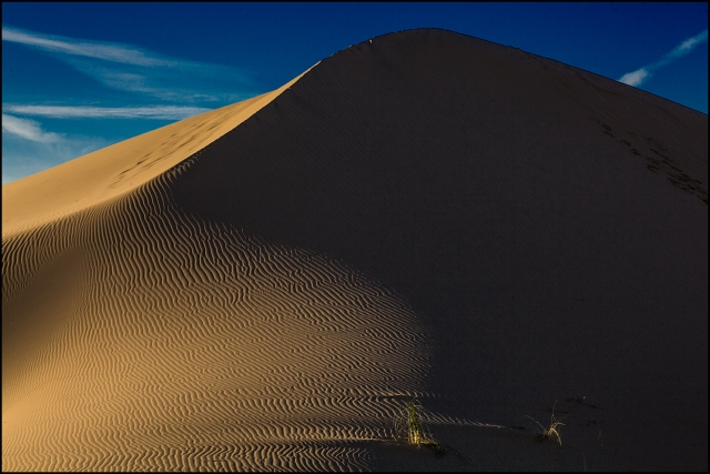 Final view of the dunes as we hiked back to the car.  Canon 70-200mm f4L