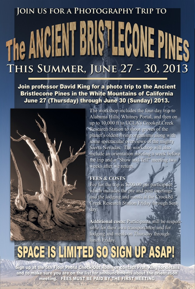 Flyer for the Bristlecone Pines Trip.  Click on the image to enlarge it to make it easier to read.