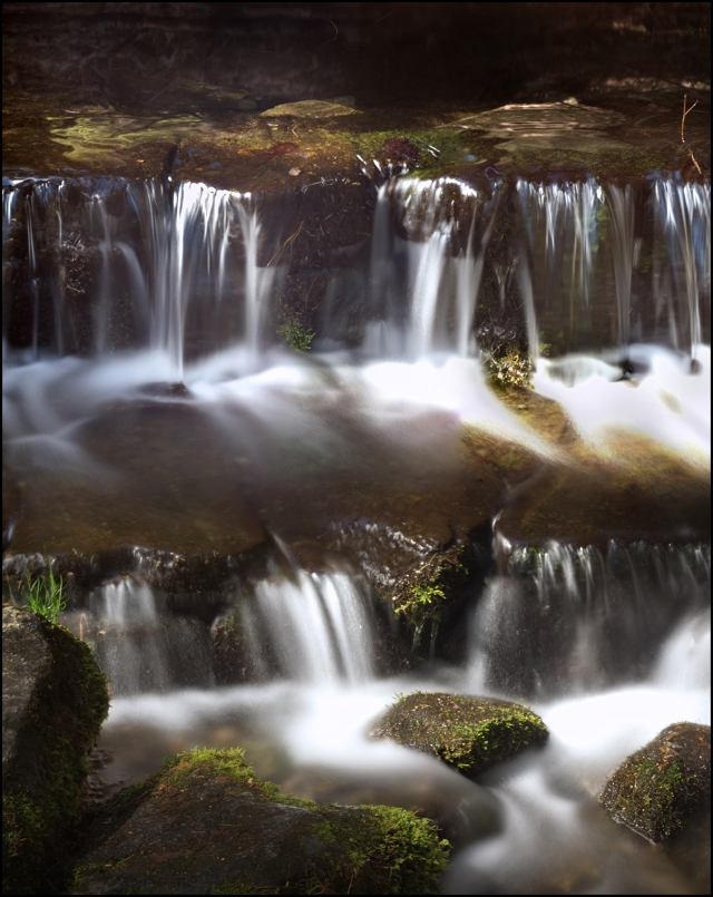 Quiet little Fern Springs is often ignored by visitors to the park.  But here is an internal mosaic with the DSLR mounted on the Wista Tech camera with each frame shot at 20 seconds.