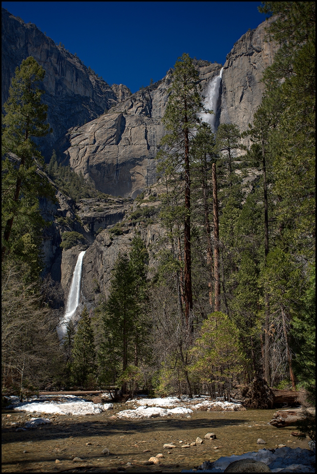Snow still hides in the forest below the Upper and Lower Yosemite Falls