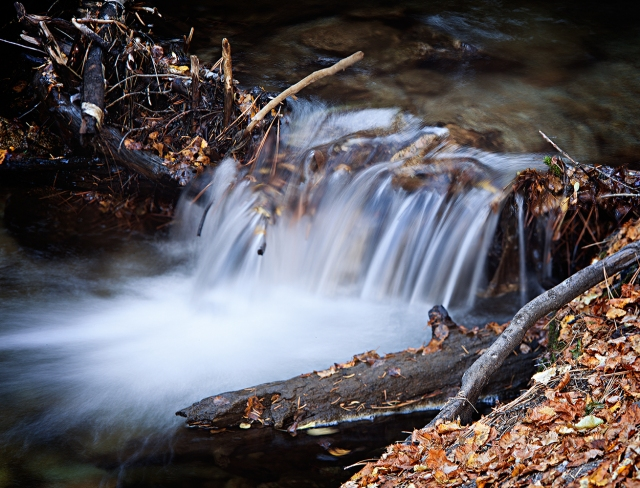 A quiet section of the creek just below the falls.  Shot with the Wista Mounted 5D Mk II and a 270mm Linhof Select Schneider.