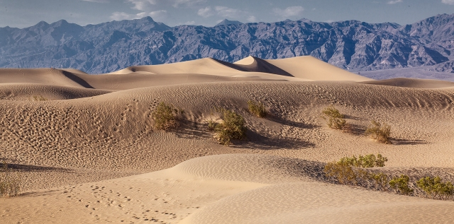 Overview of Mesquite Dunes, Death Valley NP