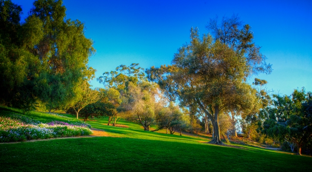 Afternoon light on a hill side at the San Diego Presidio.  Shot with Canon 5D MkII with Canon 17-40 mm f4L