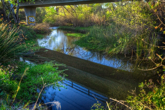 Quiet pastoral scene under the highway along the San Diego River.  HDR shot with Canon 5D MkII and 17-40 mm f4L
