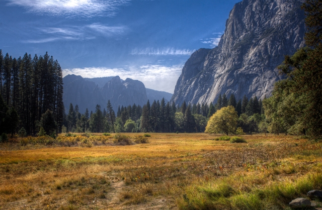 Fall colors on the grasses turns the floor of Yosemite Valley to a golden velvet. Canon 5D MkII and Canon 17-40mm f4L