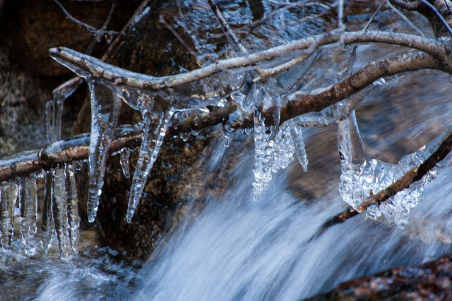 water spray encapsulates the branches and twigs in ice over the Whiteny Portal creek below the falls.