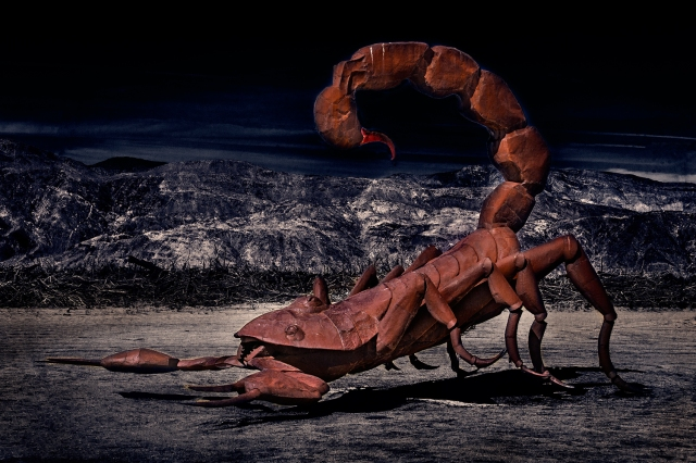 Welded metal sculpture of a desert scorpion near Borrego Springs, CA commissioned by Dennis Avery as part of collection on display in Galleta Meadows