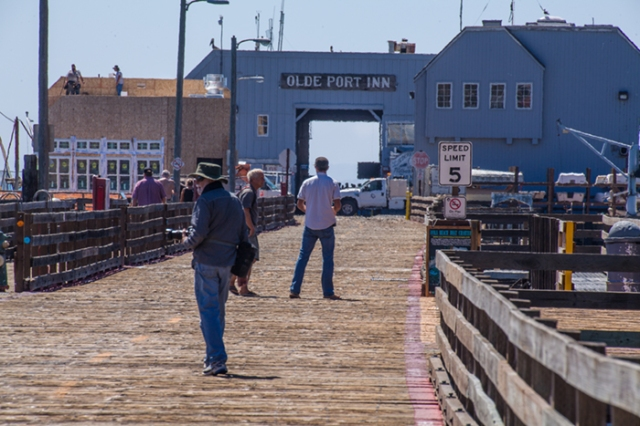Lee looking for a shot on the pier at San Luis Bay